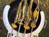 Steckerlfisch Forelle