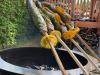 Grillaufsatz für den Steckerlfisch Forelle und BIO Zitronen + Orangen